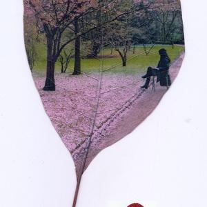 Sziromszőnyeg, 2006 Párizs, Le Jardin du Luxembourg - vörös levélen 2020, Művészet, Fotó, grafika, rajz, illusztráció, Le Jardin du Luxembourg. Ajándékba kapott vörös színű levélen, kb. 9x15 cm méretű., Meska