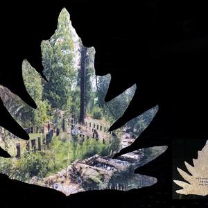 Patak a Mata Arganil parkban 2016, Portugália, Arganil - Trópusi mocsári tölgy levelén 2020, Művészet, Fotográfia, Fotó, grafika, rajz, illusztráció, Lépcsőzetes, épített mederben lassított folyású patak a Mata Arganil parkban 2016, Portugália, Argan..., Meska