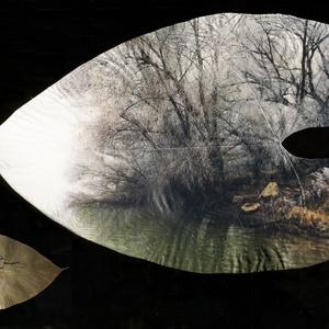 Szentendrei Dunapart 2018 - Caladium levélen 2020, Művészet, Fotó, grafika, rajz, illusztráció, A kép hordozójául szolgáló, kb. 20x34 cm méretű trópusi Caladium levelet, fonnyadó állapotban, a bud..., Meska