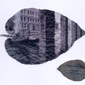 Oszlopsor gondolákkal, Velence, 2007 - fiatal eukaliptusz levélen 2020, Művészet, Fotográfia, Fotó, grafika, rajz, illusztráció, A fiatal eukaliprusz levelek kicsik, kövérek, szív alakúak és kékes-hamvasak. Amikor a fa felnőtt ko..., Meska