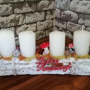 Hasáb, Karácsony & Mikulás, Adventi koszorú, Virágkötés, Mindenmás, Fehér farönköcske lett az alapja ennek az adventi koszorúnak. Némi mohával, valamint termésekkel dís..., Meska