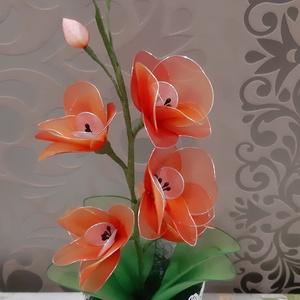 Narancssárga orchidea, Csokor & Virágdísz, Dekoráció, Otthon & Lakás, Virágkötés, A narancssárga csodás színeiben játszó orchidea.\nMagassága 38 cm,van rajta 5 virág,3 bimbó.\nBármilye..., Meska