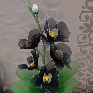 Fekete orchidea, Csokor & Virágdísz, Dekoráció, Otthon & Lakás, Virágkötés, Szereted a különleges színű virágot?\nAkkor ez a fekete orchidea pont neked való!\nMagassága kb 35 cm,..., Meska