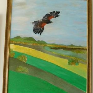 A sas, Otthon & lakás, Képzőművészet, Festmény, Olajfestmény, Festészet, A képet a természet, madarak szeretete ihlette. Feszített vászonra festettem, olajjal. Mérete 60x90c..., Meska