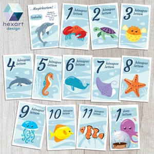 Babakártyák - egyedi megérkeztem kártyával, Készségfejlesztő & Logikai játék, Játék & Gyerek, Fotó, grafika, rajz, illusztráció, Egyedi babakártya, milestone, méföldkő, fotókártya\n\nDokumentáld babád első évét, ezekkel a kedves ál..., Meska