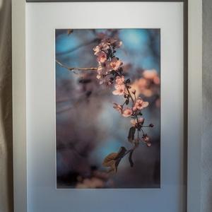 Kikelet II. (2020), Művészet, Fotográfia, Fotó, grafika, rajz, illusztráció,   A tavasznak az a néhány napja, amit kikeletnek hívunk,\naz év talán legszebb pillanata.\n\n  Az, hogy..., Meska