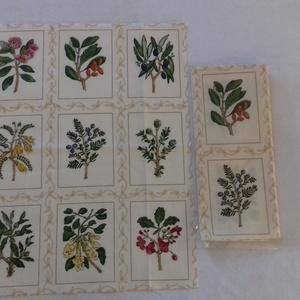 Patchwork anyag (Növény), Textil, Pamut, Varrás, Mindenmás, Kiváló minőségű angol patchwork szövet. A képen egy kiterített anyag látható, melyen látható a telje..., Meska