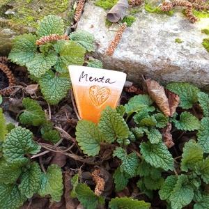 Írható növényjelölő szett szívecskés mintával, Otthon & Lakás, Ház & Kert, Növény & Veteményes, Szívecskés mintával díszített növényjelölő lapocskák fűszernövényekhez, tetején fehér mázas sávval, ..., Meska