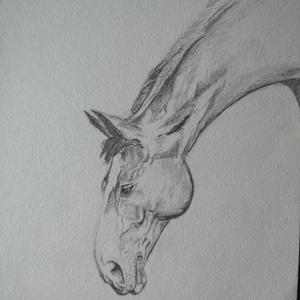 Horse, Művészet, Akvarell, Festmény, Eredeti grafika 20.5x28,7 cm méretben.  Keret nélkül.   Szívesen postázom is, de költségét csak csom..., Meska