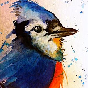 Szajkó akvarell festmény (Eredeti) (konradoart67) - Meska.hu