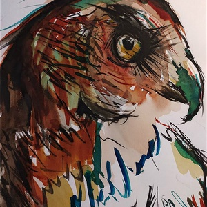 Sólyomszem (Eredeti alkotás), Otthon & lakás, Képzőművészet, Festmény, Akvarell, Festészet, Eredeti Bíró Richárd akvarell festmény.\n\nJó minőségű vastag akvarellpapírra készült alkotás, amely n..., Meska