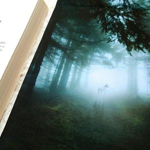MYSTIC FOREST - Könyv Védő Tok, Könyvölelő, Könyvvászon - VÁLASZTHATÓ MÉRET!, Könyv- és füzetborító, Papír írószer, Otthon & Lakás, Varrás, Ez a puha KÖNYV - ÖLELŐ megvédi a kedvenc olvasmányaidat!\n\nTe is egy igazi könyvmoly vagy? Mindig a ..., Meska