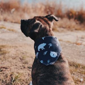Prémium kutyakendő/ Andilndr x Laud, 3 méretben, Művészet, Grafika & Illusztráció, PRÉMIUM KUTYAKENDŐ  Rögtön a roll-top táskák után elkezdtük tervezni még októberben a karácsonyi kol..., Meska