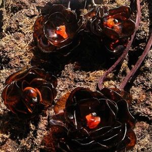 Barna virág szett pet palackból készült újrahasznosított fülbevaló, gyűrű és medál, Ékszerszett, Ékszer, Újrahasznosított alapanyagból készült termékek, Barna pet palackból aprólékos munkával készített virág formájú fülbevaló, gyűrű és medál.\n\nA fülbeva..., Meska