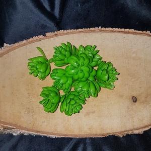 Kövirózsa, pozsgás növény - 10db/cs, Dekorációs kellékek, Egyéb kellékek, Virágkötészet, Mindenmás, Decoupage, szalvétatechnika, Kövirózsa - 10db/cs  4cmx4cm\n\nTermékeim közt találsz nagyobb kiszerelésű száraz terméseket és egyéb ..., Meska