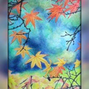 Japán juhar, Művészet, Festmény, Akvarell, Festészet, 35x25 cm-es akvarell, itt-ott tollal rajzolt részletekkel. Az ősz színei fantasztikusak...(A keret v..., Meska