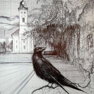Városi madár-toll rajz, bekeretezve., Művészet, Grafika & Illusztráció, Fotó, grafika, rajz, illusztráció, A varjak gyakran betérnek a városba élelmet keresni...ezt örökítettem meg,egy pillanatkép formájában..., Meska