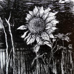 A kert végében - grafika vízálló tintával - Meska.hu