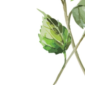 Virág festmény, Hortenzia kép, Print, falikép, Tavaszi dekor, kép, Húsvéti Dekor, Otthoni dekoráció (LindaButtercup) - Meska.hu