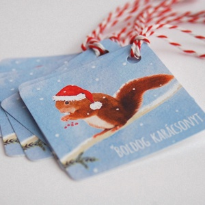 Állatos Karácsonyi Ajándékkísérő, Mókus, Adventi Kártya, Mikulás sapka, piros, Ünnepi, kiskártya, ajándék, natúr, egyedi, Karácsonyi képeslap, Karácsony & Mikulás, Otthon & Lakás, Fotó, grafika, rajz, illusztráció, Mindenmás, Állatos Igényes Ajándékkártya darabra\n\n* Kártya mérete: Kb:  5.9cm x5.9cm\n* Hátoldal üres, saját üze..., Meska