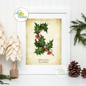 Vintage kép, Print, Vintage karácsonyi kép, dekoráció, dekor, falikép, Adventi, fenyő, magyal, holly, botanikus, növény, Karácsonyi dekoráció, Karácsony & Mikulás, Otthon & Lakás, Kép & Falikép, Dekoráció, Otthon & Lakás, Fotó, grafika, rajz, illusztráció, Mindenmás, A4 Minőségi Print Lap, Nyomtatás\n\n* KERET NÉLKÜL! *\n\n* MÉRET: A4\n\n* ANYAG: \n250g-os kiváló minőségű ..., Meska
