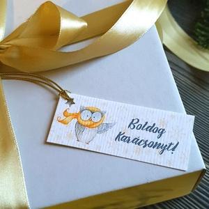 Karácsonyi Ajándékkísérő, bagoly, madár, Adventi Kártya,Ünnepi, kiskártya, ajándékkártya, állatos, Otthon & lakás, Dekoráció, Ünnepi dekoráció, Karácsony, Ajándékkísérő, Naptár, képeslap, album, Ajándékkísérő, Fotó, grafika, rajz, illusztráció, Mindenmás, Ajándékkísérő\n\n* Kártya mérete: Kb:  7.5 x 3cm\n* Hátoldal üres\n* Kötöző hossza kb.: 10cm\n\n250 gsm ma..., Meska