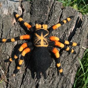 Madárpók, Dekoráció, Otthon & lakás, Dísz, Egyéb, Nemezelés, Nemezelőgyapjúból tűnemezeléssel készített madárpók figura. A pók zseníliadrót vázra épült, lábai bi..., Meska