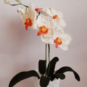 Horgolt orchidea, Otthon & lakás, Dekoráció, Dísz, Horgolás, Mindenmás, Horgolt  orchidea kaspóba rögzítve.\nMagassága kaspóval együtt kb. 43 cm.\n\nSzobadísznek ajánlom, pl. ..., Meska
