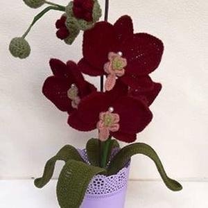 Horgolt, bordó orchidea, Dekoráció, Otthon & Lakás, Horgolt & Csipketerítő, Horgolás, Mindenmás, Horgolt, bordó színű orchidea kaspóba rögzítve.\nMagassága kaspóval együtt kb. 42 cm.\n\nSzobadísznek a..., Meska