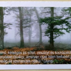 3 kinyitható képeslap saját fotóval - köd, fák, kilincs (ManocskaMazsola) - Meska.hu