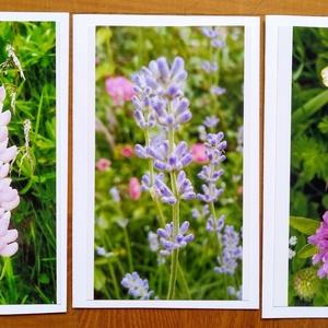 3 db kinyitható képeslap saját fotóvel - virágok itthonról és a Tátrából, Otthon & lakás, Képzőművészet, Fotográfia, Naptár, képeslap, album, Képeslap, levélpapír, Fotó, grafika, rajz, illusztráció, Saját fotóimból és fehér műszaki rajzlapból készítettem ezeket a kihajthatós képeslapokat, azoknak, ..., Meska