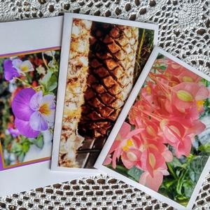 3 db kinyitható képeslap saját fotóval - árvácska, begónia, pálma, pad, Képeslap & Levélpapír, Papír írószer, Otthon & Lakás, Fotó, grafika, rajz, illusztráció, Saját fotóimat tettem műszakirajzlapra, így készültek kinyitható képeslapjaim a természet képeivel, ..., Meska
