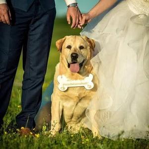 """Kutyusoknak esküvőre: gravírozott csont alakú táblácska, Esküvő, Dekoráció, Tábla & Jelzés, Gravírozás, pirográfia, Kreatív fotózáshoz, eljegyzésre, mennyegzőre is !\nEgyre több jegyespár a """"Nagy Napon"""" sem hagyja mag..., Meska"""