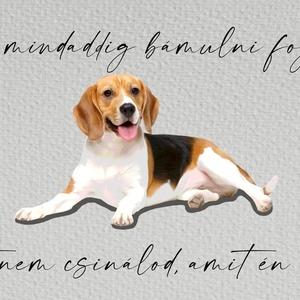 """Beagle kutyás falikép, Művészet, Grafika & Illusztráció, Fotó, grafika, rajz, illusztráció, Saját készítésű, tervezésű egyedi, humoros kézírásos betűkkel \""""Én mindaddig bámulni foglak, amíg azt..., Meska"""