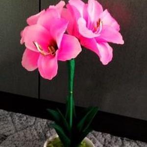 Harisnyavirág, Otthon & Lakás, Dekoráció, Asztaldísz, Virágkötés, Ha szeretnél egy tartós és gondozást nem igénylő virágot, akkor ez a harisnyavirág Amarilisz a tied ..., Meska