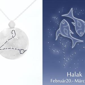 Ezüst halak horoszkóp medál, halak állatövi jegy, halak csillagkép ví, Medál, Nyaklánc, Ékszer, Ékszerkészítés, Ötvös, 925-ös ezüstből készül a medál színezett felületű réz drótokkal\nA drótok színét a földjegyek alapján..., Meska