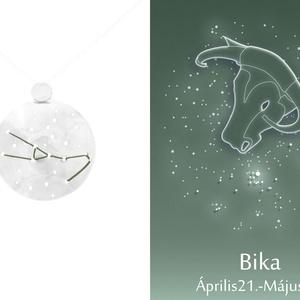 Ezüst bika horoszkóp medál, bika állatövi jegy, bika csillagkép, Ékszer, Medál, Nyaklánc, Ékszerkészítés, Ötvös, 925-ös ezüstből készül a medál színezett felületű réz drótokkal\nA drótok színét a földjegyek alapján..., Meska