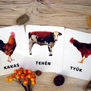 Tanulókártya- Házi állatok, Gyerek & játék, Játék, Baba játék, Készségfejlesztő játék, Társasjáték, Fotó, grafika, rajz, illusztráció, Varrás, mini PAKLI – Tanulókártya kicsiknek\n1-6 éves korig ajánlott.\n\nA kártyákon szereplő képek segítenek m..., Meska