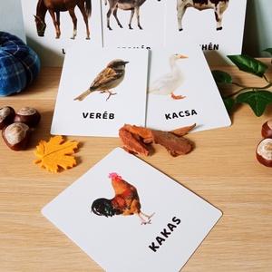 Háziállatok, Játék & Gyerek, Készségfejlesztő & Logikai játék, Fotó, grafika, rajz, illusztráció, Varrás, mini PAKLI – Tanulókártya kicsiknek 1-6 éves korig ajánlott.  A kártyákon szereplő képek segítenek ..., Meska