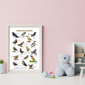 Madarak a kertben plakát, Otthon & Lakás, Dekoráció, Kép & Falikép, Fotó, grafika, rajz, illusztráció, A madarak a kertben plakátot magunkkal vihetjük kirándulásokra, megfigyelhetjük a kertünkben levő ma..., Meska