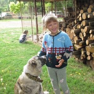 Kardigán a természet szeretetéhez, Táska, Divat & Szépség, Gyerekruha, Ruha, divat, Gyerek & játék, Gyerek (1-10 év), Kötés, Hímzés, Gyapjú műszál keverékből kötöttem ez az aranyos kardigánt kis unokámnak.Vannak rajta báránykák, libá..., Meska