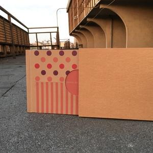 Eco nagy fotóalbum-pink és lila színes pöttyös és csíkos (noteshell) - Meska.hu