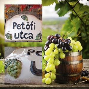 Ősszel érik a szőlő...kerámia egyedi utcanévtábla (ntakeramia) - Meska.hu
