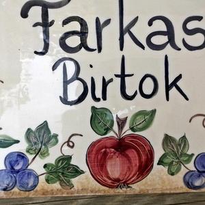 Szóló szőlő, mosolygó alma, csengő barack kerámia utcanévtábla (ntakeramia) - Meska.hu