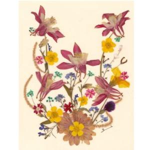10 db Üdvözlőlap, préselt virág nyomat, ajándék, , Otthon & Lakás, Papír írószer, Képeslap & Levélpapír, Fotó, grafika, rajz, illusztráció, Mindenmás, 10 db Üdvözlőlap, préselt virág nyomat - FMS O 062\n\nA virágok életében, a préselés, olyan, mintha me..., Meska