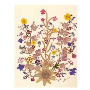 10 db Üdvözlőlap, préselt virág nyomat, ajándék, , Otthon & Lakás, Papír írószer, Képeslap & Levélpapír, Fotó, grafika, rajz, illusztráció, Mindenmás, 10 db Üdvözlőlap, préselt virág nyomat - FMS O 066\n\nA virágok életében, a préselés, olyan, mintha me..., Meska