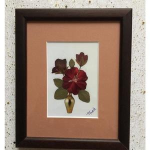 Falikép préselt virággal TIR1 01, Otthon & Lakás, Dekoráció, Kép & Falikép, Mindenmás, Préselt virággal készült egyedi alkotás. Falikép, rámázva. \nMérete 14,5x17,5 cm. \n\nSzállitáskor bubo..., Meska