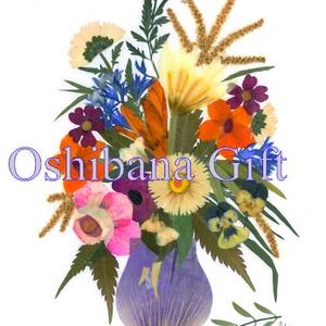 10 db Üdvözlőlap, préselt virág nyomat, ajándék, , Otthon & Lakás, Papír írószer, Képeslap & Levélpapír, Fotó, grafika, rajz, illusztráció, Mindenmás, 10 db Üdvözlőlap, préselt virág nyomat - FMS LM 22\n\nA virágok életében, a préselés, olyan, mintha me..., Meska