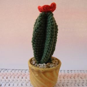 Horgolt virágzó kaktusz - örök virág, Csokor & Virágdísz, Dekoráció, Otthon & Lakás, Horgolás, Horgolt virágzó kaktusz - örök virág\n\nHorgolással készítettem ezt a kb: 10 cm nagyságú virágzó kaktu..., Meska