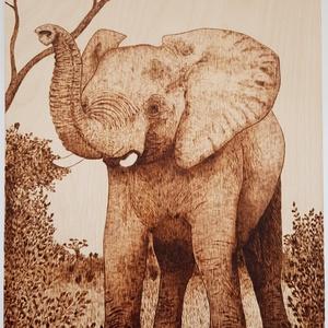 Elefánt - falikép, Otthon & lakás, Dekoráció, Kép, Lakberendezés, Falikép, Gravírozás, pirográfia, Ez a bébi elefántot ábrázoló kép 3 mm vastag nyírfa lapra, pirográf technikával készült. \nA pirográf..., Meska